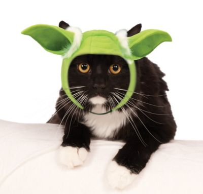 yoda ears cat hat star wars