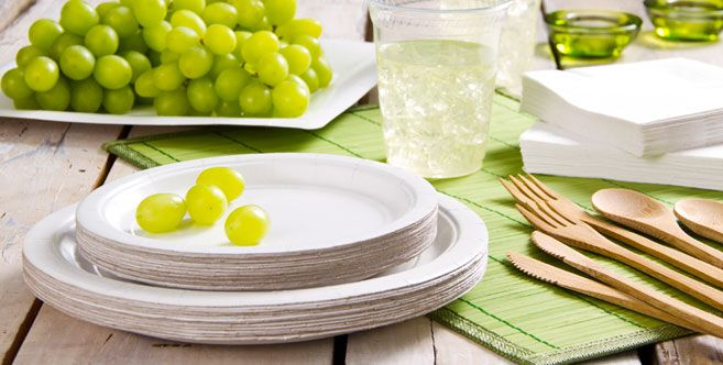 Eco Friendly White Tableware