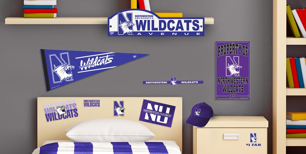 NorthWestern Wildcats Party Supplies