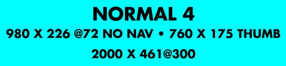Custom Robin's Egg Blue Stripe Photo Banner 6ft