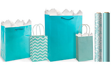 Gift bags gift wrap wrapping paper tissue paper party city robins egg blue gift bags gift wrap negle Gallery