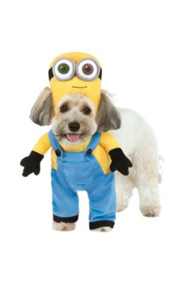 Bob Dog Costume Minions Movie