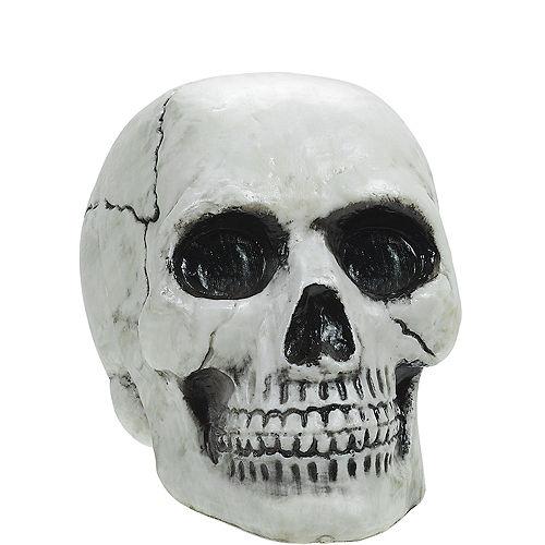 8a91a193012baa Halloween Skeletons   Skulls - Skeleton Decorations