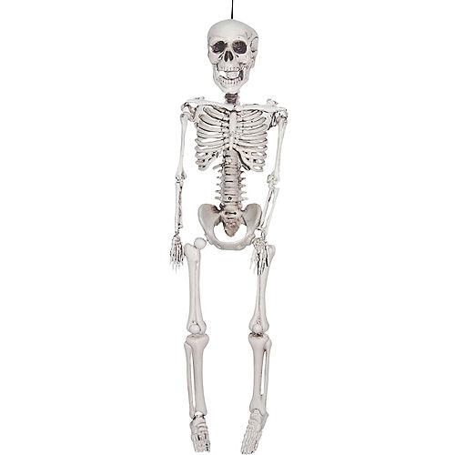 Halloween Skeletons & Skulls - Skeleton Decorations | Party City
