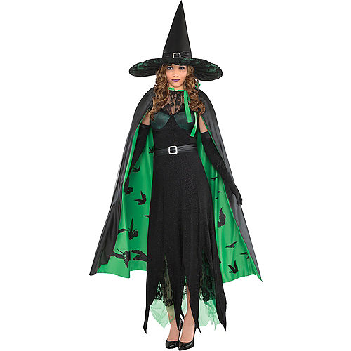 Womens Wicked Witch Costume - The Wizard of Oz