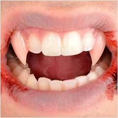 Fangs, Teeth