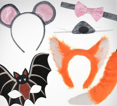Other Animal Accessories