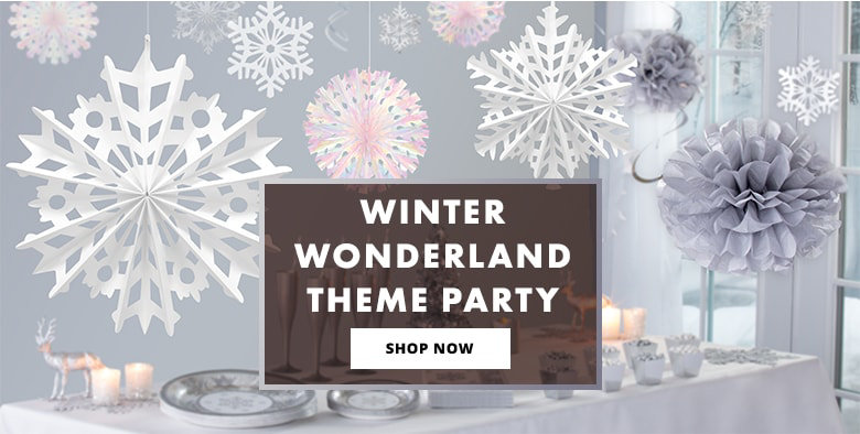 Silver Winter Wonderland Theme Party Shop Now